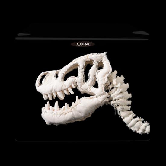 「化石スピーカー」 REIZOKO SPEAKERの画像
